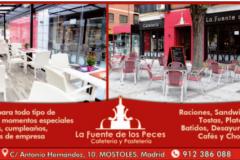 La-Fuente-Los-Peces-8