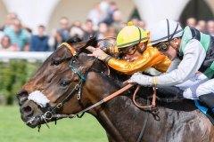 carrera-caballos-jinetes