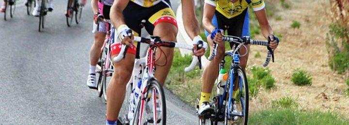 Federación Madrileña de Ciclismo
