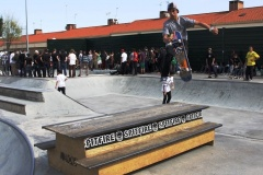 I-Stance-Park-Series-ano-2014-DOMINGOLM