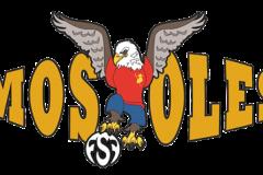 F.S.F_Mostoles-1