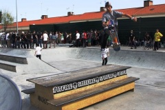 I-Stance-Park-Series-ano-2014-DOMINGOLM-2