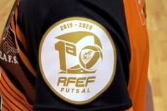 1a-div-FS-FEM-2
